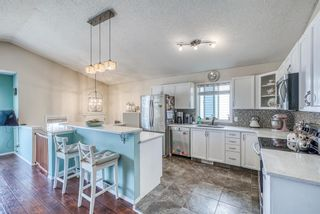 Photo 11: 10 Inverness Place SE in Calgary: McKenzie Towne Detached for sale : MLS®# A1095594