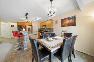 Photo 38: 146 Cranfield Crescent SE in Calgary: Cranston Detached for sale : MLS®# A1095687