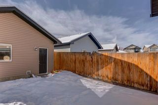 Photo 48: 119 ELGIN MEADOWS Way SE in Calgary: McKenzie Towne Detached for sale : MLS®# A1067731