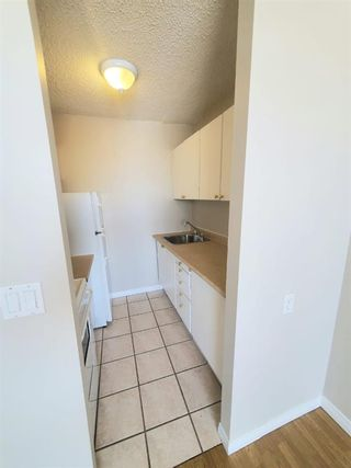 Photo 22: 304 4820 47 Avenue: Red Deer Apartment for sale : MLS®# A1061234