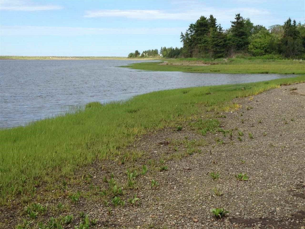 Main Photo: Lot 2 Shore Road in Lower Barneys River: 108-Rural Pictou County Vacant Land for sale (Northern Region)  : MLS®# 202008057