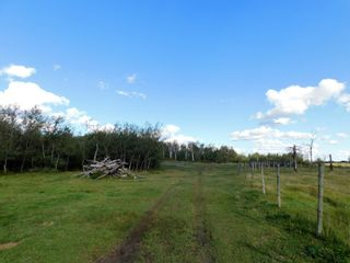 Photo 8: Rge Rd 231 North of Twp Rd 564: Rural Sturgeon County Rural Land/Vacant Lot for sale : MLS®# E4262842
