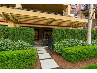 """Photo 2: 154 8328 207A Street in Langley: Willoughby Heights Condo for sale in """"Yorkson Creek"""" : MLS®# R2252850"""