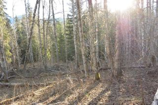 Photo 9: LOT A KLOECKNER Road in Smithers: Smithers - Rural Land for sale (Smithers And Area (Zone 54))  : MLS®# R2598861