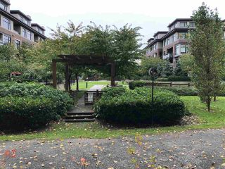 """Photo 24: 108 262 SALTER Street in New Westminster: Queensborough Condo for sale in """"Portage at Port Royal"""" : MLS®# R2509481"""