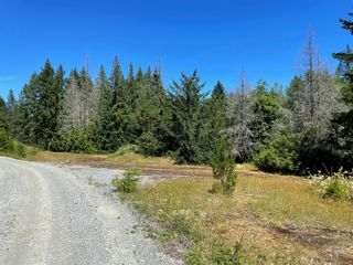 Photo 40: LOT A White Rapids Rd in : Na Extension Land for sale (Nanaimo)  : MLS®# 879885