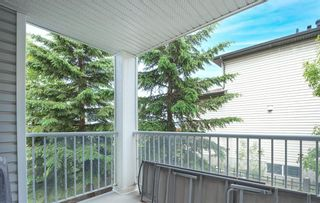 Photo 30: 212 3212 Valleyview Park SE in Calgary: Dover Apartment for sale : MLS®# A1116209