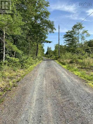 Photo 11: Lot 4 New Elm Road in New Elm: Vacant Land for sale : MLS®# 202119710