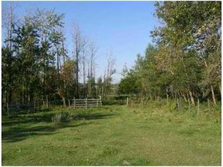 Photo 11: SW COR TWP RD 534 & RR 222: Rural Strathcona County Rural Land/Vacant Lot for sale : MLS®# E4251108