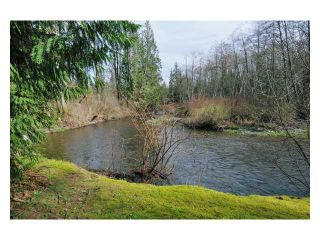 Photo 10: 12680 239TH Street in Maple Ridge: East Central House for sale : MLS®# V923370