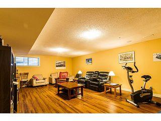 Photo 16: 10302 MCEACHERN ST in Maple Ridge: Albion House for sale : MLS®# V1103018