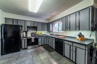 Photo 15: 20280 47 Avenue in Langley: Langley City House for sale : MLS®# R2558837