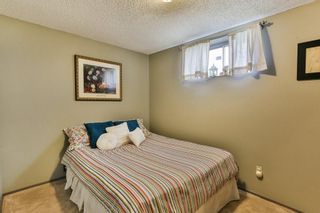 Photo 32: 111 EDFORTH Place NW in Calgary: Edgemont Detached for sale : MLS®# C4280432