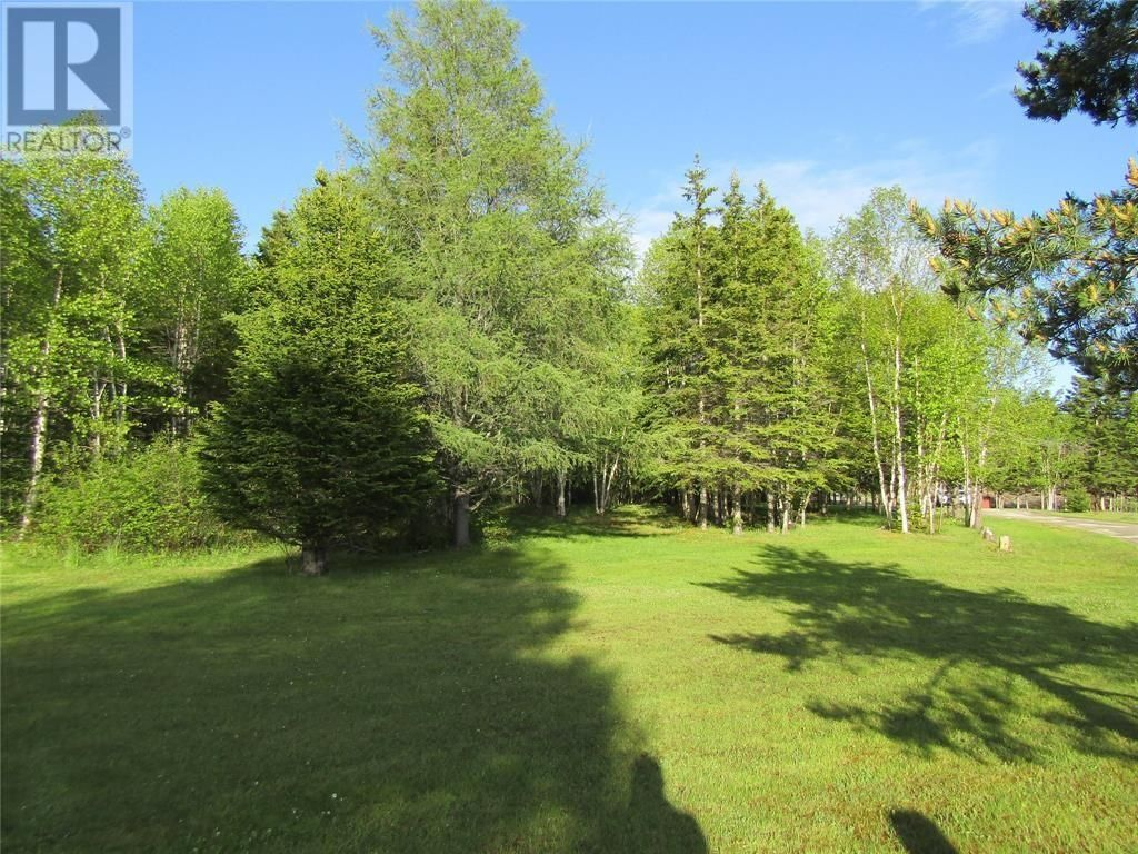Main Photo: 25B TRANS CANADA Highway in PYNNS BROOK: Vacant Land for sale : MLS®# 1229378