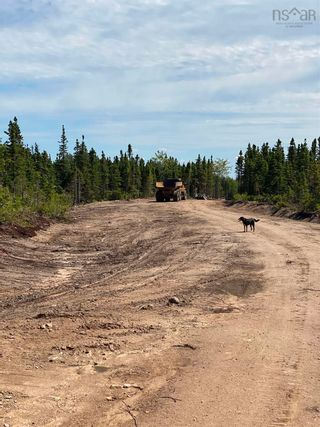 Photo 13: Lot 4 36056 Cabot Trail in Ingonish: 209-Victoria County / Baddeck Vacant Land for sale (Cape Breton)  : MLS®# 202119814