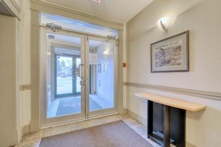 Photo 33: 302 2 14 Street NW in Calgary: Hillhurst Apartment for sale : MLS®# A1145344