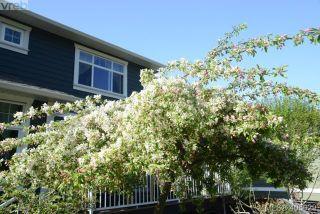 Photo 33: 2324 Demamiel Pl in SOOKE: Sk Sunriver House for sale (Sooke)  : MLS®# 804798
