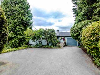 """Photo 1: 21763 48 Avenue in Langley: Murrayville House for sale in """"MURRAYVILLE"""" : MLS®# R2485267"""