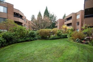 """Photo 2: 221 2640 FROMME Road in North Vancouver: Lynn Valley Condo for sale in """"TREELYNN"""" : MLS®# R2562547"""