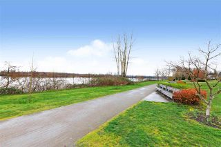 Photo 21: 5 11060 BARNSTON VIEW Road in Pitt Meadows: South Meadows Townhouse for sale : MLS®# R2560911