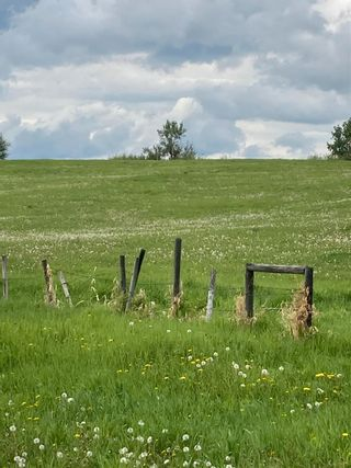 Photo 5: TWP 502 RR 215: Rural Leduc County Rural Land/Vacant Lot for sale : MLS®# E4249465