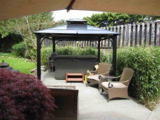 Photo 5: 11981 248 Street in Maple Ridge: Cottonwood MR House for sale : MLS®# R2165177