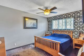 """Photo 20: 7444 BARMSTON Place in Delta: Nordel House for sale in """"Royal York"""" (N. Delta)  : MLS®# R2542398"""