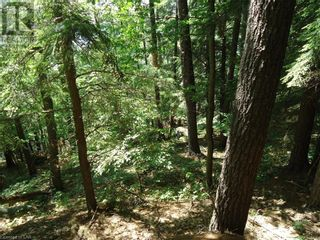 Photo 33: 400 MARY LAKE (GRYFFIN BLUFFS LANE) Lane in Port Sydney: Vacant Land for sale : MLS®# 40126538