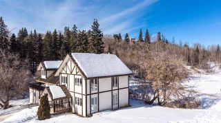 Photo 22: 9644 88 Avenue in Edmonton: Zone 15 House for sale : MLS®# E4187777