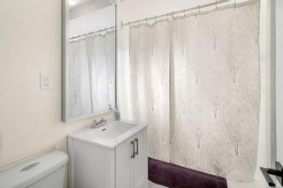 Photo 17: 3516 Calumet Ave in Saanich: SE Quadra House for sale (Saanich East)  : MLS®# 870944