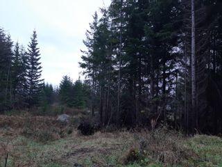 Photo 4: LOT 3 Timberline Way in : Sk Jordan River Land for sale (Sooke)  : MLS®# 862147