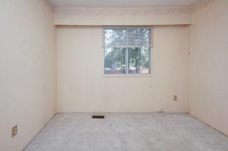 Photo 21: 21260 COOK Avenue in Maple Ridge: Southwest Maple Ridge House for sale : MLS®# R2530636