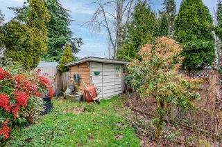 Photo 25: 2661 WILDWOOD Drive in Langley: Willoughby Heights House for sale : MLS®# R2531672