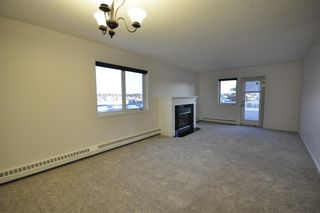 Photo 7: 306 790 Kingsmere Crescent SW in Calgary: Kingsland Apartment for sale : MLS®# A1065637