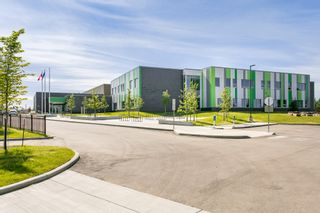 Photo 47: 4259 23St in Edmonton: Larkspur House for sale : MLS®# E4203591