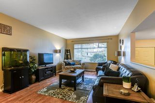 Photo 3: 11265 HARRISON Street in Maple Ridge: East Central House for sale : MLS®# R2046862