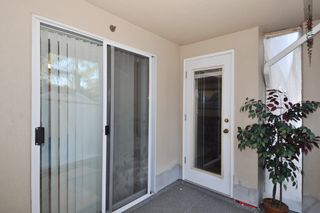 Photo 12: 211 2551 PARKVIEW Lane in Port Coquitlam: Central Pt Coquitlam Condo for sale : MLS®# R2133459