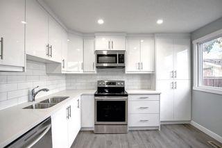 Photo 13: 3020 Dover Crescent SE in Calgary: Dover Semi Detached for sale : MLS®# A1147762