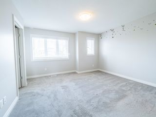 Photo 25: 5215 ADMIRAL WALTER HOSE Street in Edmonton: Zone 27 House for sale : MLS®# E4260055