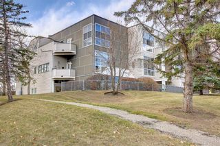 Photo 31: 203 59 Glamis Drive SW in Calgary: Glamorgan Apartment for sale : MLS®# A1149436