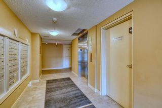 Photo 22: 316 20 Kincora Glen Park NW in Calgary: Kincora Apartment for sale : MLS®# A1144974