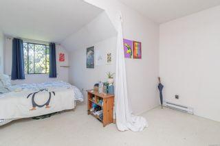 Photo 16: 3909 Blenkinsop Rd in : SE Cedar Hill House for sale (Saanich East)  : MLS®# 878731