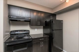 Photo 8: 217 18126 77 Street in Edmonton: Zone 28 Condo for sale : MLS®# E4241570