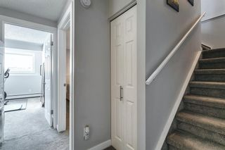 Photo 28: 8 515 18 Avenue SW in Calgary: Cliff Bungalow Apartment for sale : MLS®# A1117103