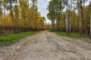 Photo 2: #9 North Pigeon Lake Estates: Rural Wetaskiwin County Rural Land/Vacant Lot for sale : MLS®# E4265016