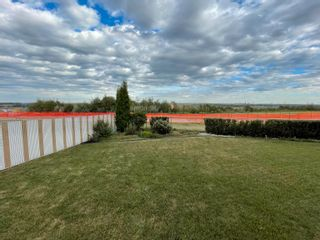 Photo 30: 14407 16 Street in Edmonton: Zone 35 House for sale : MLS®# E4258389