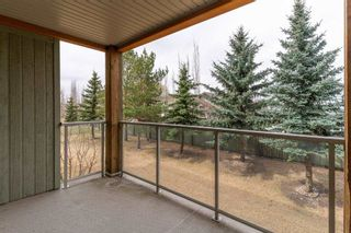 Photo 29: 214 278 SUDER GREENS Drive in Edmonton: Zone 58 Condo for sale : MLS®# E4241668