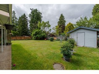 Photo 20: 21093 43 Avenue in Langley: Brookswood Langley House for sale : MLS®# R2088477