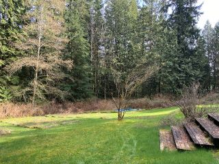 Photo 37: 11390 WILSON Street in Mission: Stave Falls House for sale : MLS®# R2564859