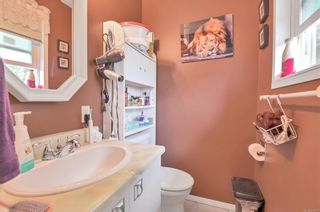 Photo 22: 515 S Birch St in : CR Campbell River Central House for sale (Campbell River)  : MLS®# 877937